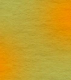 フサコガネのイラスト