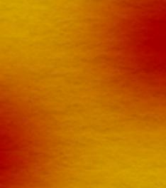 コシヒカリのイラスト